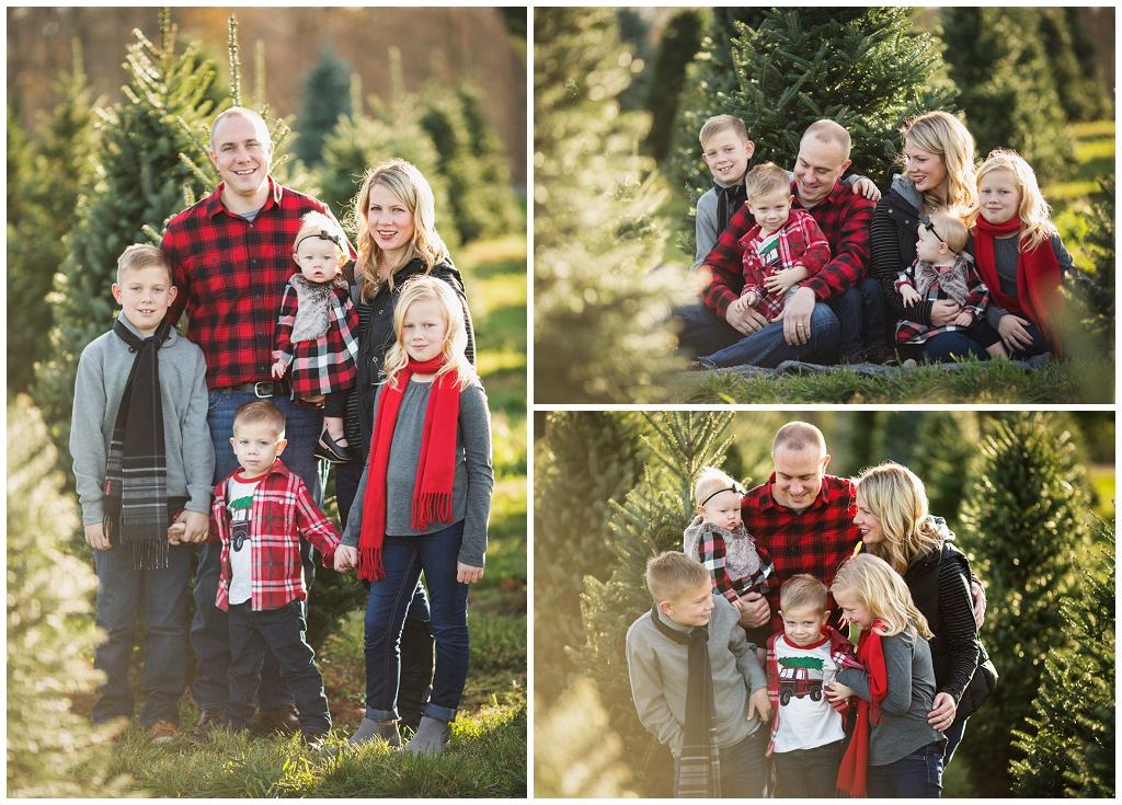 Christmas Tree Farm Minis 9 Bucyrus Ohio Newborn Photographer